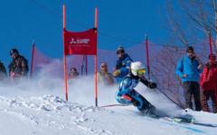 Snow, Speed, Ski, State