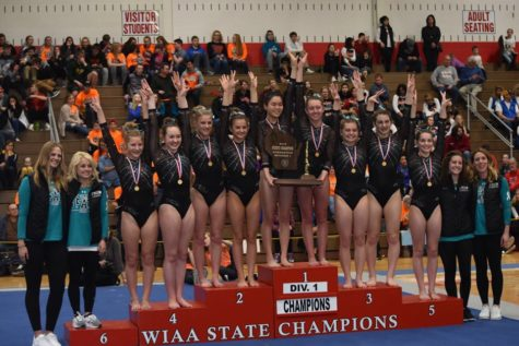Gymnastics Takes Home Another Win